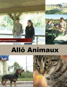 Allo Animaux Cover